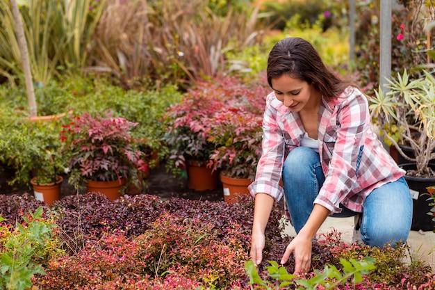Vrouw die installaties in tuin schikt