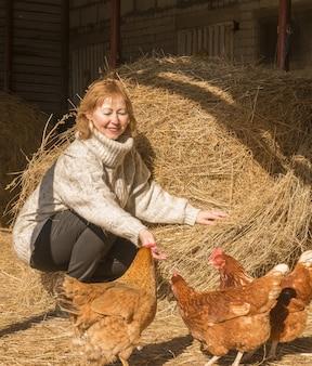 Vrouw die kip voedt. haan met kip lopen op hooi op het platteland. kudde kippen aan het grazen
