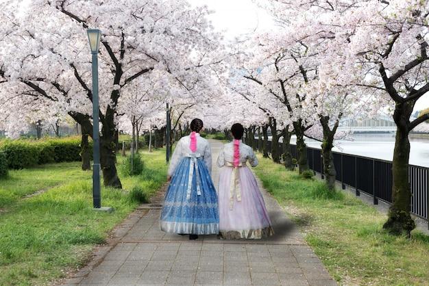 Vrouw die koreaanse nationale kleding draagt die in park en kersenbloesem loopt in seoel, zuid-korea.