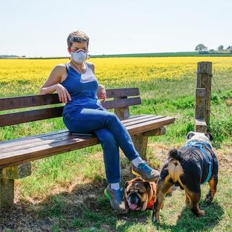 Vrouw die masker draagt en op bank tegen raapzaadgebied zit en twee engelse buldoggen die in de schaduw rusten
