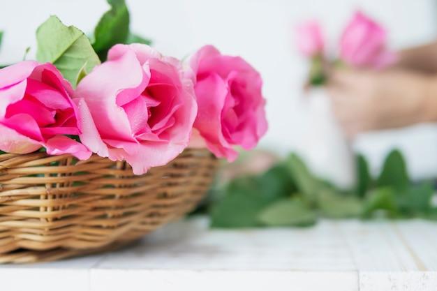 Vrouw die roze rozen gelukkig aan witte vaas aanbrengen