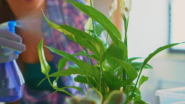Vrouw die 's ochtends bloemen op de keukentafel water geeft. met behulp van vruchtbare grond met schop in pot, witte keramische bloempot en planten voorbereid voor herbeplanting voor huisdecoratie, steriliseren en verzorgen.