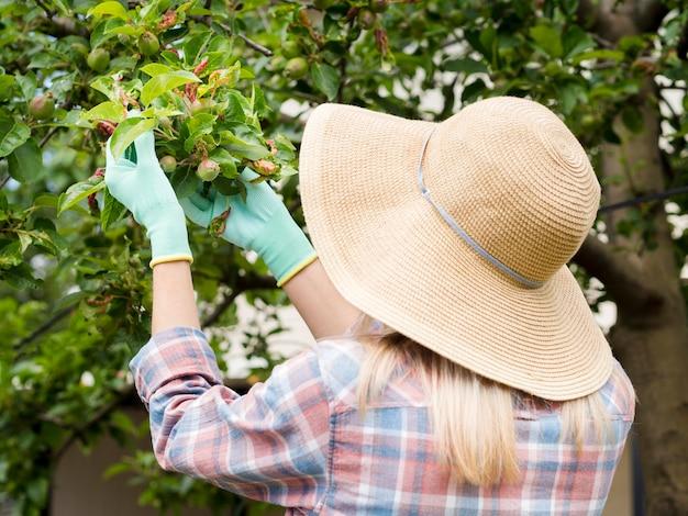 Vrouw die sommige installaties in haar tuin bekijkt