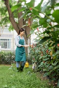 Vrouw die voor planten zorgt