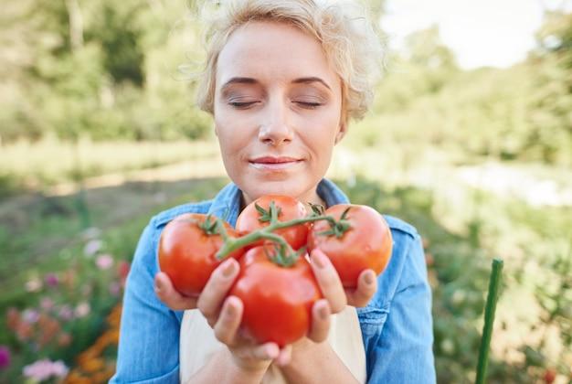 Vrouw die wat tomaten uit haar tuin opraapt