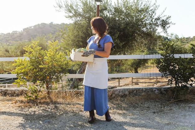 Vrouw die zich op het gebied bevindt dat geoogste groenten in krat houdt
