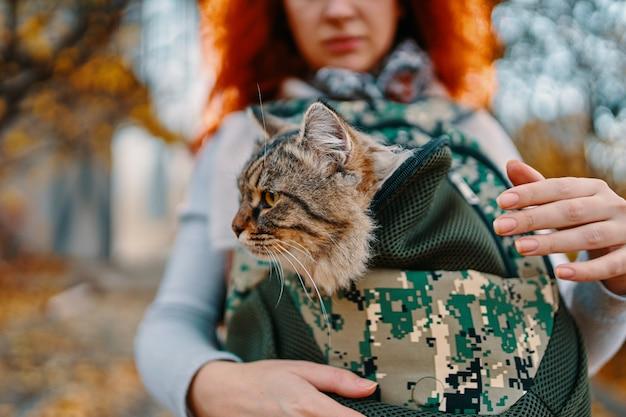 Vrouw draagt cyperse kat in een tas