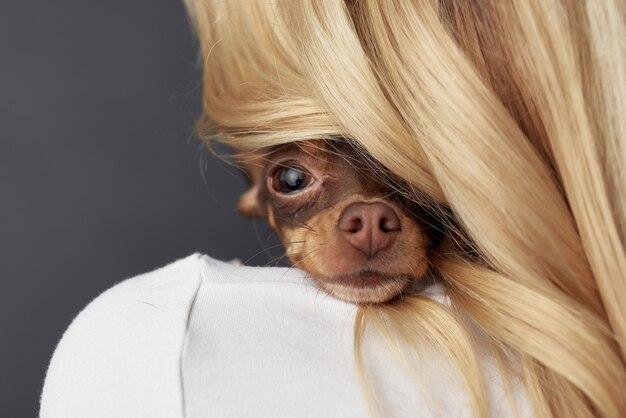 Vrouw een kleine hond leuke studio geïsoleerde achtergrond