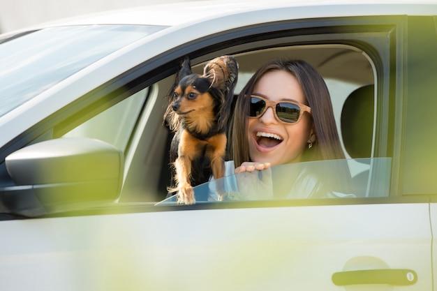 Hond in auto cartoon afbeelding | Premium Vector