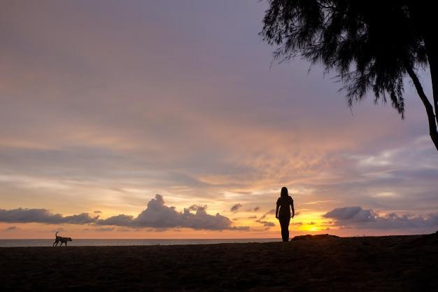 Vrouw en hond in de zee strand zonsondergang
