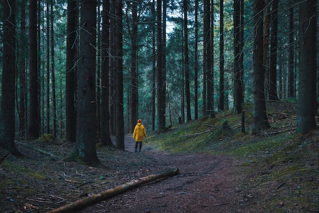Vrouw felgele regenjas lopen op een pad in een mistig donker bos