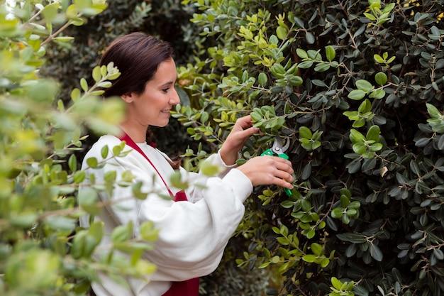 Vrouw gekleed in tuinieren kleding haag trimmen
