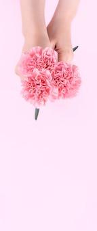 Vrouw geven bos anjers geïsoleerd op helder roze achtergrond,