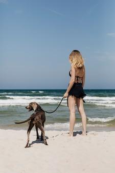 Vrouw haar weimaraner-hond wandelen op het strand