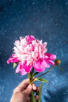 Vrouw hand met mooie zachte roze pioen op blauwe gestructureerde achtergrond in trendy stijl met schaduwen. feestelijke wenskaart met bloem voor moederdag of vrouwen vakantie. verticale foto kopieer ruimte.