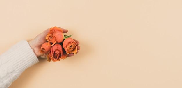 Vrouw hand met oranje rozen op een roze achtergrond. kopieer ruimte. lente concept.