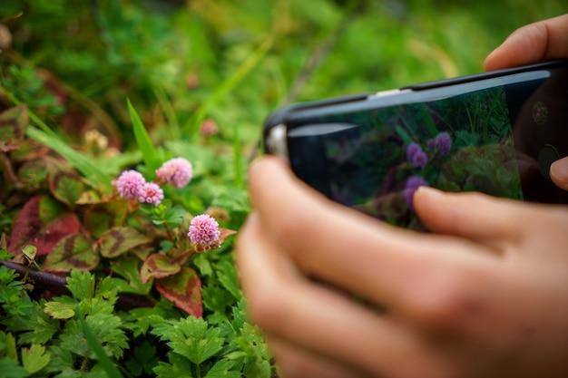 Vrouw handen houden en met behulp van slimme telefoon met wazig kleurrijke bloementuin oppervlak