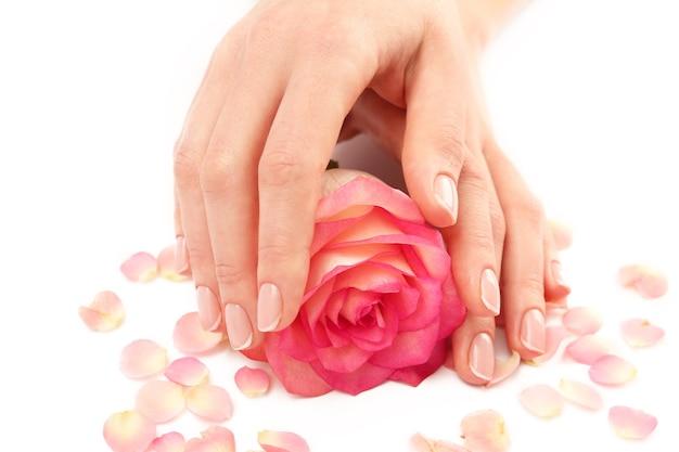 Vrouw handen met mooie roos en bloemblaadjes op witte achtergrond, close-up