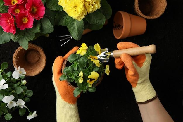 Vrouw houd pot. bodem met bloemen en tuingereedschap, bovenaanzicht