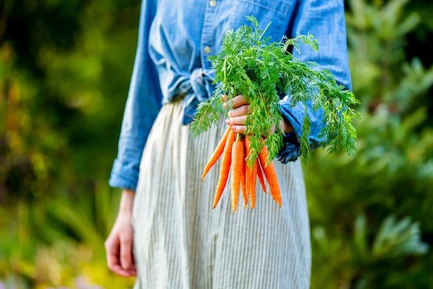 Vrouw houdt verse wortelen in een tuin
