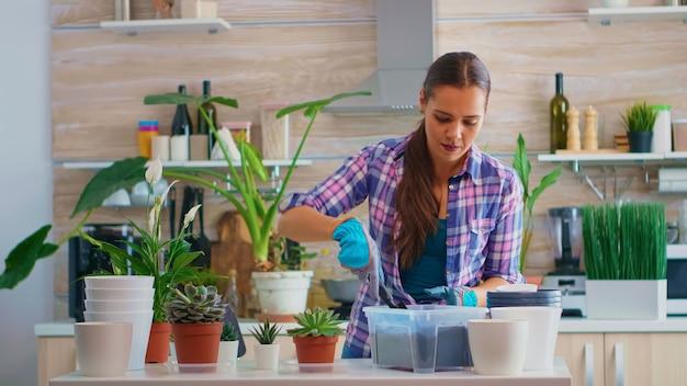 Vrouw huis planten in de keuken met behulp van tuinhandschoenen. met behulp van vruchtbare grond met een schop in pot, witte keramische pot en kamerbloem, planten, voorbereid voor herbeplanting thuis voor huisdecoratie.