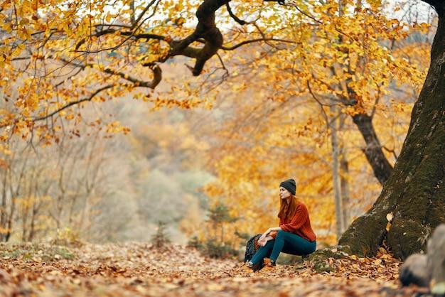 Vrouw in de herfst in het park bij een grote boom en in een rugzak op de grond. hoge kwaliteit foto