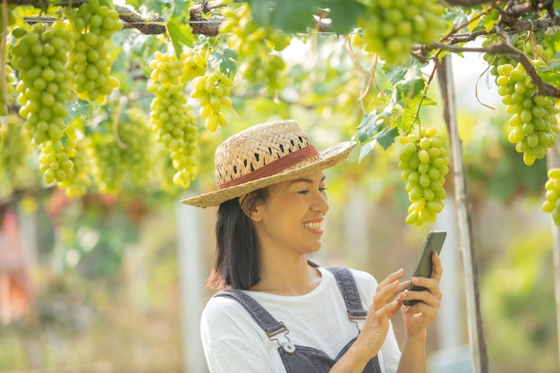 Vrouw in de tuin met behulp van mobiele telefoon om bestellingen voor haar druif op te nemen.