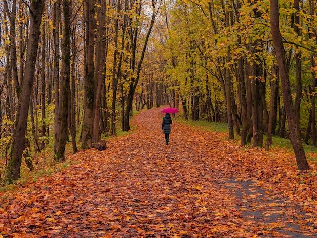 Vrouw in een donkere jas en een rode paraplu loopt over een kronkelend pad in de regen.