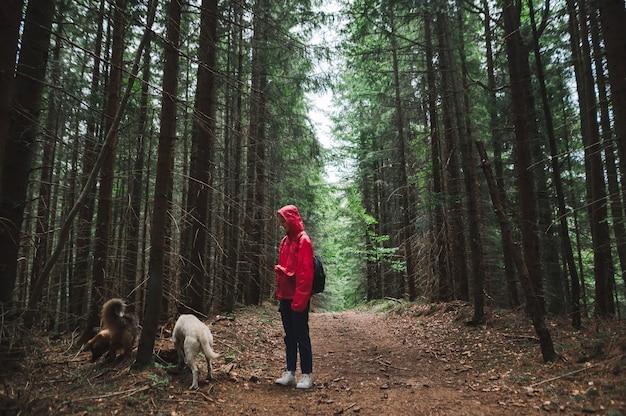 Vrouw in een rood jasje en met twee honden staat in het bos