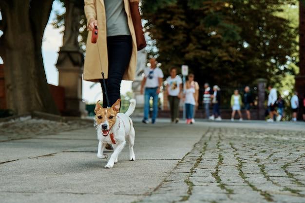 Vrouw loopt met hond