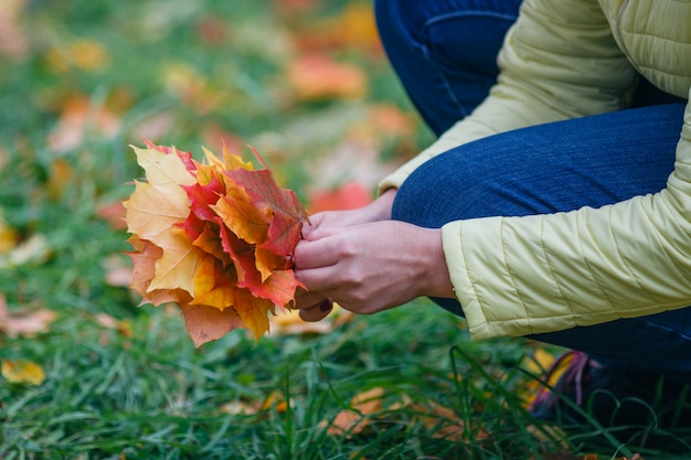 Vrouw lopen in herfst park en verzamelen brigth esdoornblad