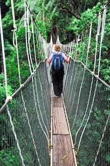 Vrouw lopen op canopy bridge in maleisië