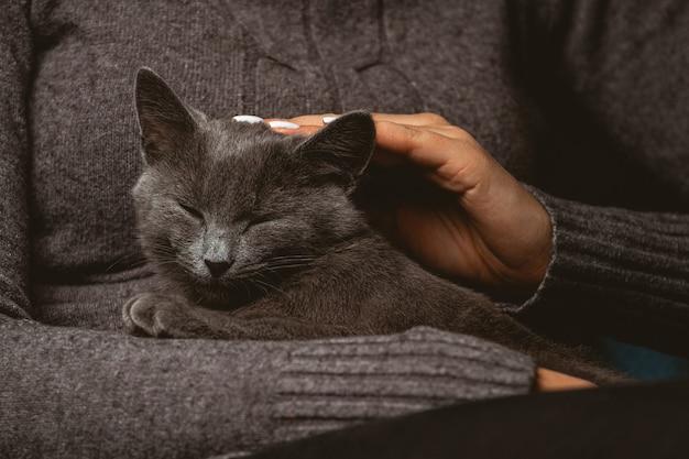 Vrouw met binnenlandse grijze kat in handen