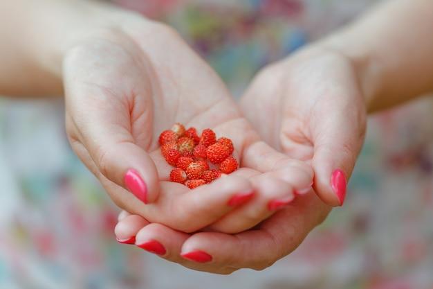 Vrouw met een hand vol wilde aardbeien