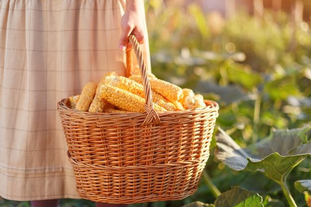 Vrouw met een mand met een oogst van maïs in haar hand.