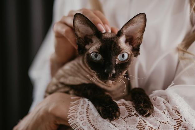 Vrouw met haar sphynx-kat in haar handen