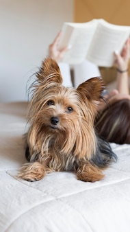 Vrouw met hond naast lezing