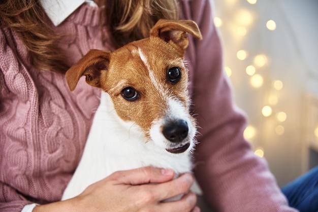 Vrouw met hond ontspannen. huisdier zorg concept
