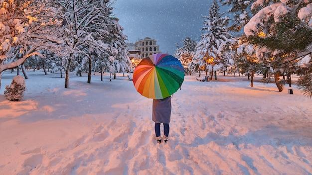 Vrouw met kleurrijke paraplu loopt onder sneeuwlaag in het winterpark