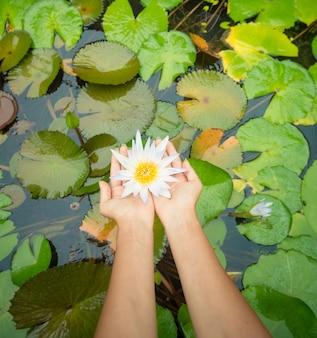 Vrouw met lotusbloem - waterlelie
