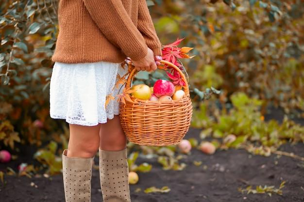 Vrouw met mandhoogtepunt van rijpe appelen in een tuin
