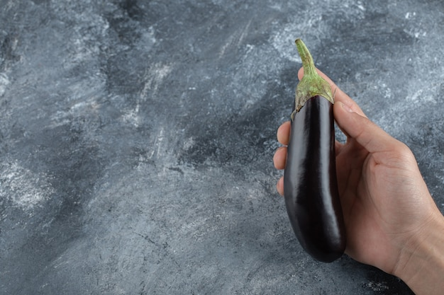 Vrouw] met verse rijpe aubergine met de hand.