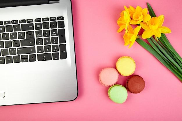 Vrouw of vrouwelijke werkruimte met notebook, macarons en bloemen narcissus