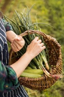 Vrouw oogsten van groenten