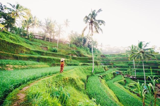 Vrouw op tegalalang rijstterras in bali