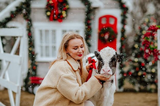 Vrouw poseren met jonge stier op de kerstboerderij met vakantiedecor. sneeuwen