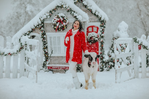 Vrouw poseren met jonge zwart-witte stier op de kerstboerderij met vakantiedecor. sneeuwen.