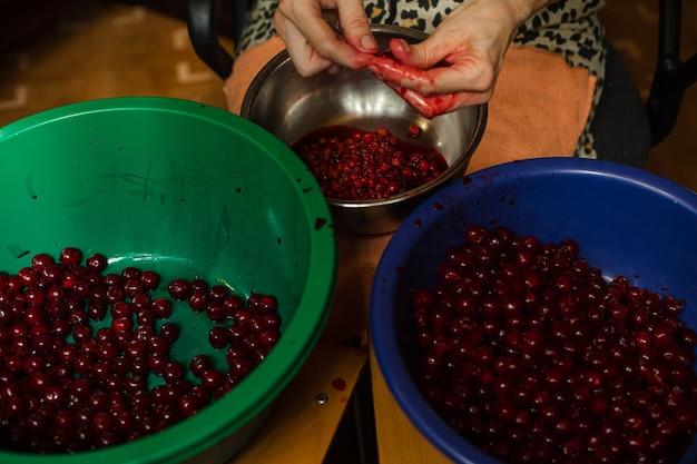 Vrouw reinigt kersen van zaden voordat ze jam of sap kookt
