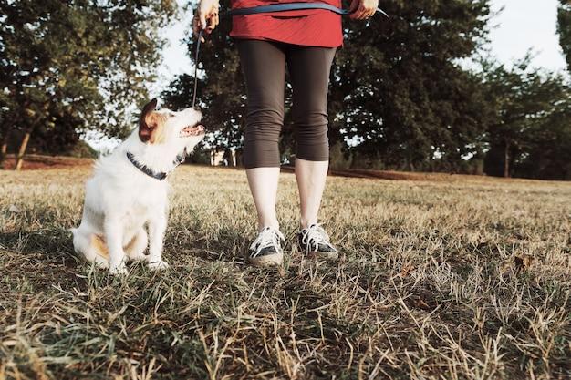 Vrouw rent met haar jack russell-hond en lacht vrolijk. herfst lente buitensport activiteit