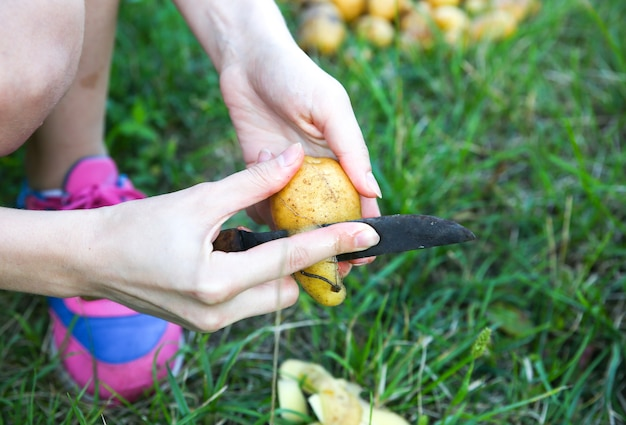 Vrouw schilt aardappelen. zelfgemaakte lunch buiten. zomerse sferen.